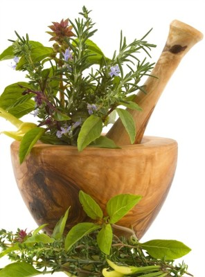 herbs to increase stomach acid
