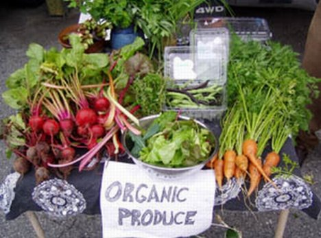 does organic food help heal hives?
