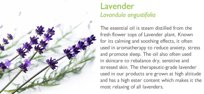 lavendar Facial Toner