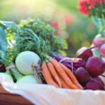 4 Vital Tips How to Make Sure Your Produce is Toxin-Free